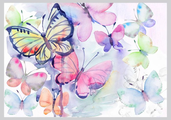 Victoria Nelson Butterfly Watercolour Copy