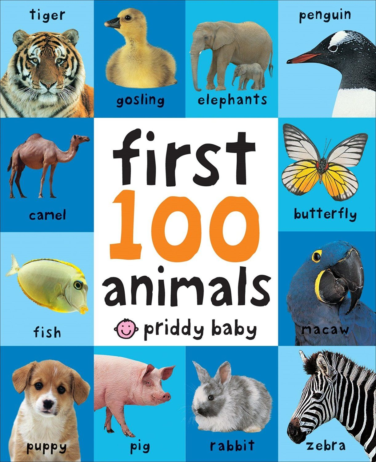 Download First 100 Animals ebook pdf Animal book, Best