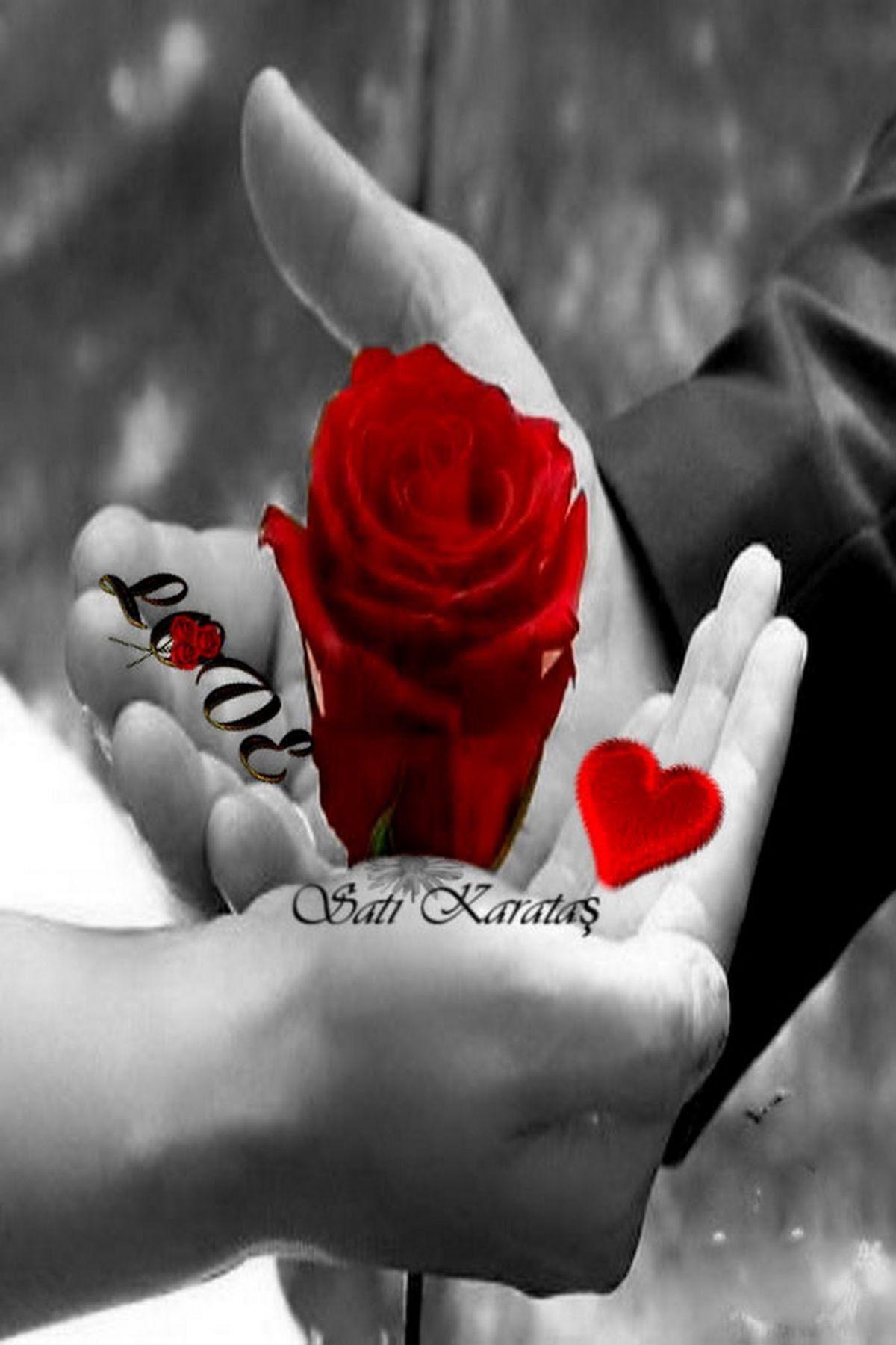والحب حرفان تفصيلا واجمالا حرف يذيب القلب وحرف يشغل البال فحاءه حيره Imagens Romanticas Frases Engracadas Para Whatsapp Casal Apaixonado
