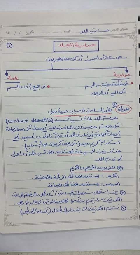 Pin By Eman Ali On Pharmacy Pharmacy Medicine Medical