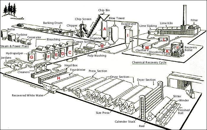 pulp and paper process diagram