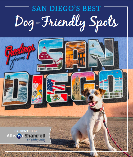 Free Guide San Diego S Best Dog Friendly Places Includes Beaches Restaurants Parks More San Diego Dogs California Dog San Diego Dog Friendly