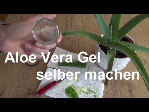 Aloe Vera Creme Selber Herstellen : aloe vera gel selber machen aloe vera creme selbst gemacht ~ Watch28wear.com Haus und Dekorationen