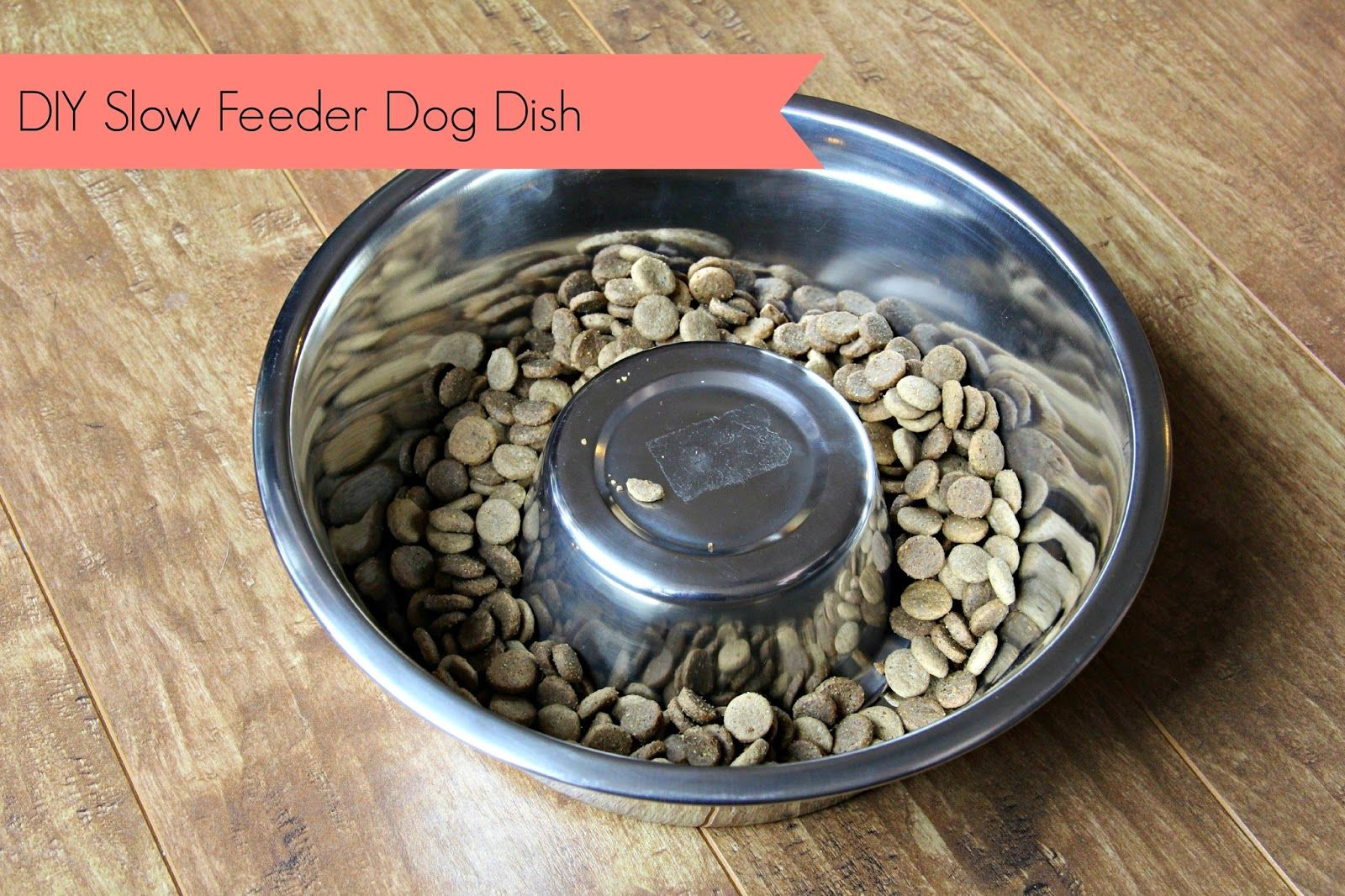 DIY Slow Feeder Dog Dish | No Ordinary Sparrow | Dog Chow