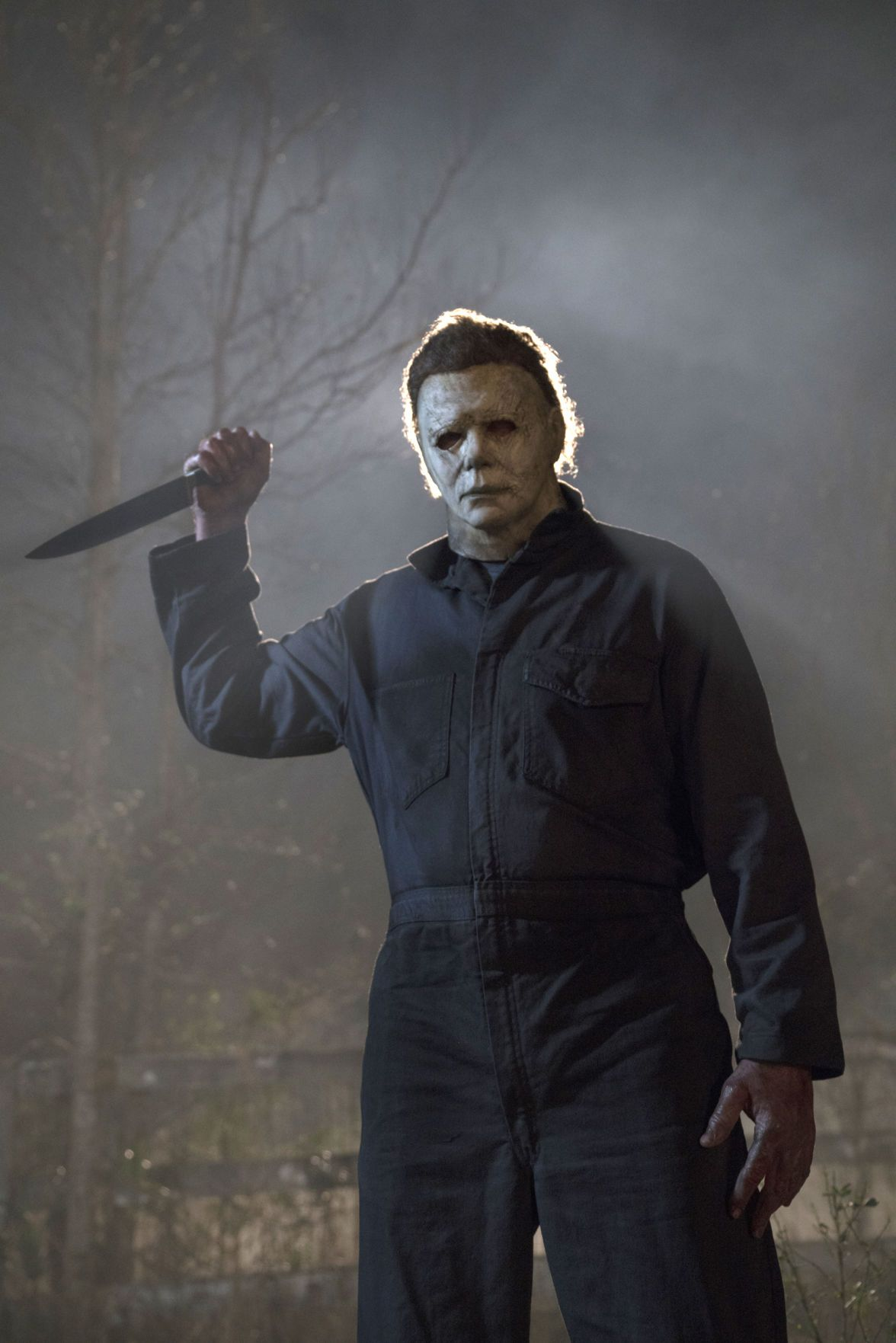 Pin by Mini on 420 in 2020 Halloween film, Michael myers