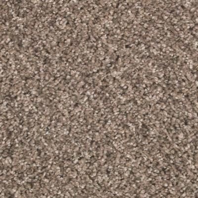 Petproof Carpet Sample Tidal Pool Color Haven Textured 8 In X