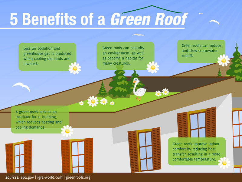 17 Incredible Roofing House Tropical Ideas Green Roof Green