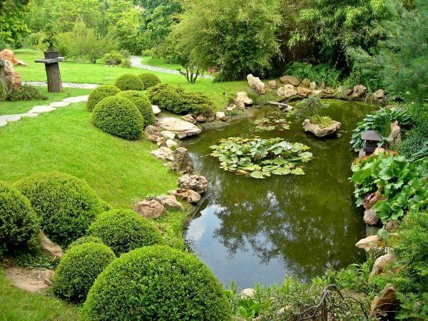 Gartenteich gestaltung tipps anlage regenwasser fische for Gartenteich gestaltung