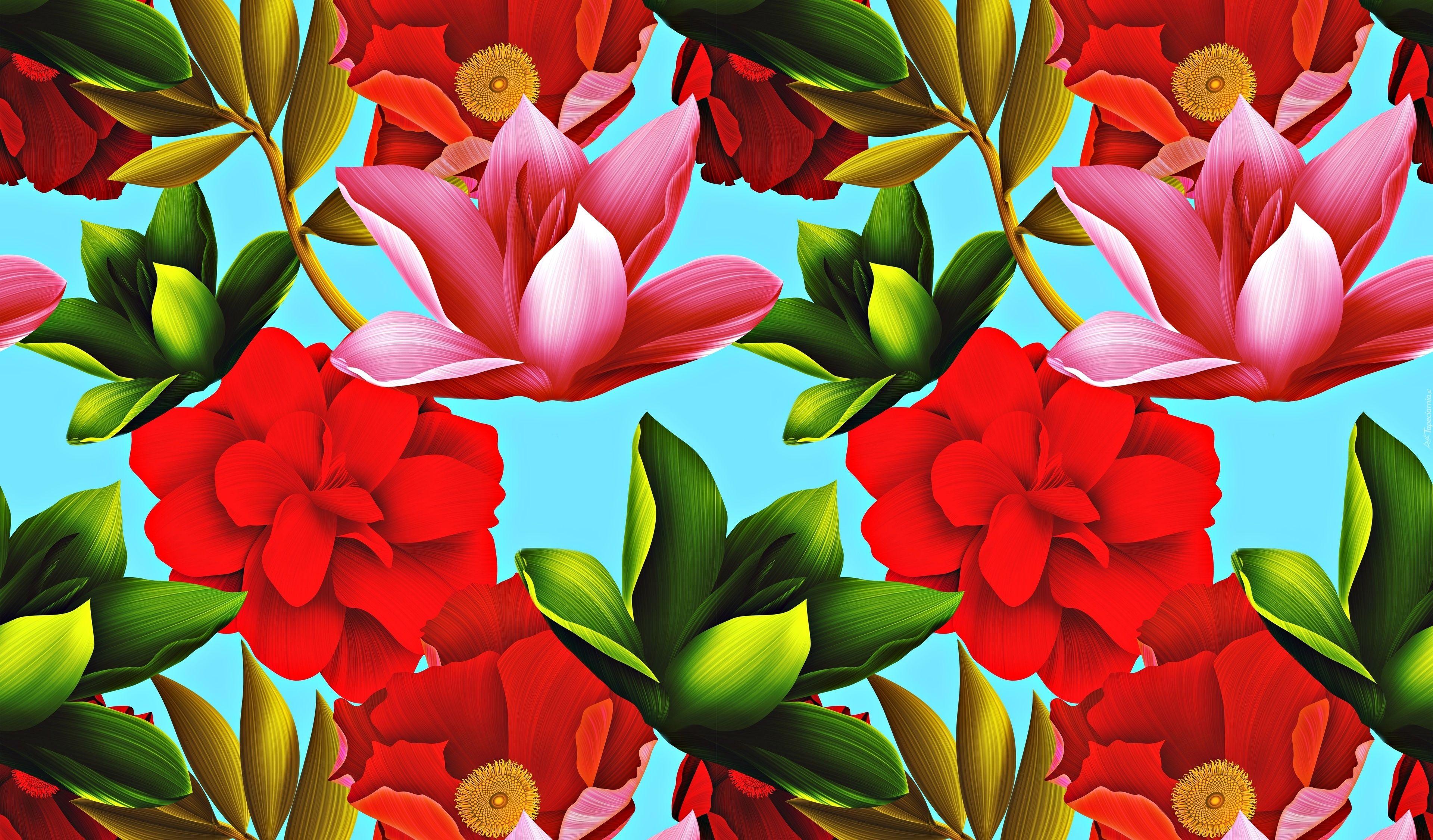Kwiaty Kolorowe Tekstura Flowers Plants Rose