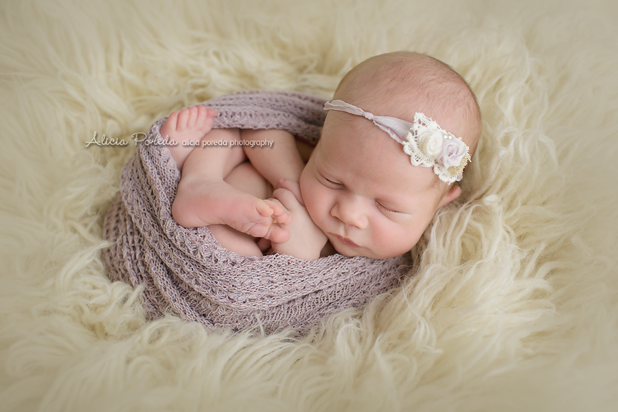 Newborn photographer colorado springs alicia poreda photography