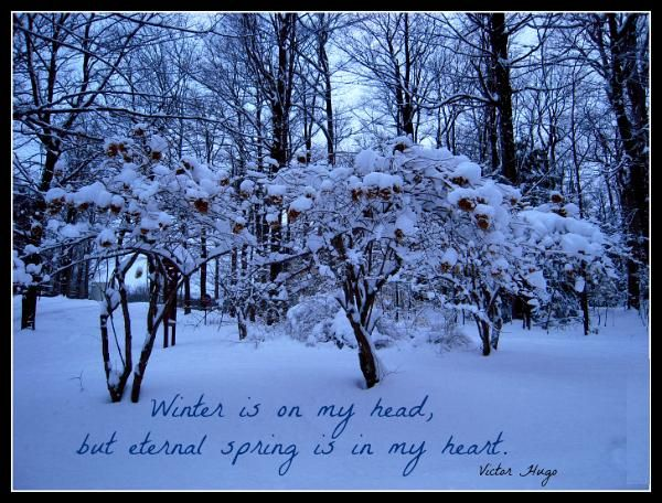 Winter Quotes Winter Quotes Victor Hugo Quotes Sunday Quotes Funny