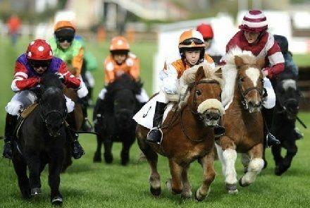 funny horse jockeys | Funny Horse Racing Gallery