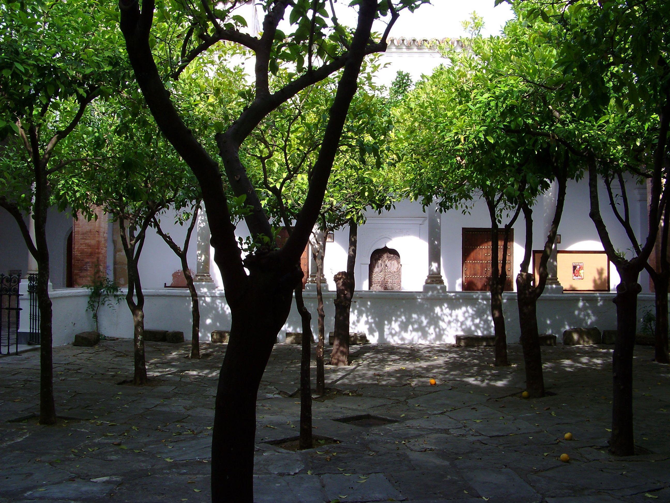 Patio de los Naranjos (Parroquia de la Oliva)