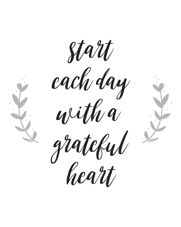 #gratitudequote #gratefulquote #quote #inspirationalquote #grateful  #gratitude