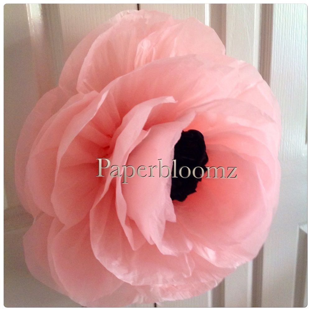 Paperbloomz Large Paper Peonies X 5 Bulk Tissue Paper Flowers Wall