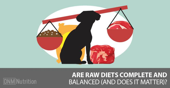 Why Aafco Guidelines Are Useless For Raw Dog Food Dog Food