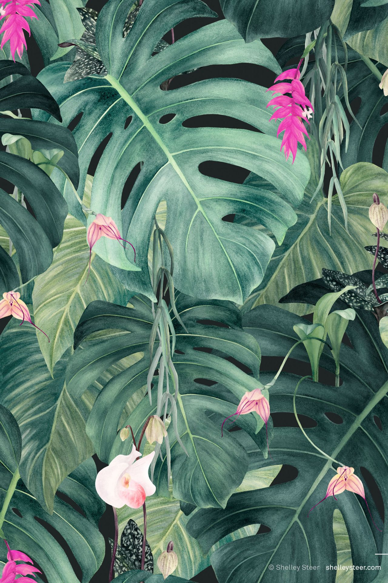 MAY   Hothouse   Colourway 2 © Shelley Steer   SUMMER 2017 deco ...