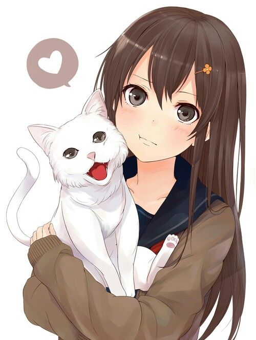 Anime girl brown hair brown eyes white cat