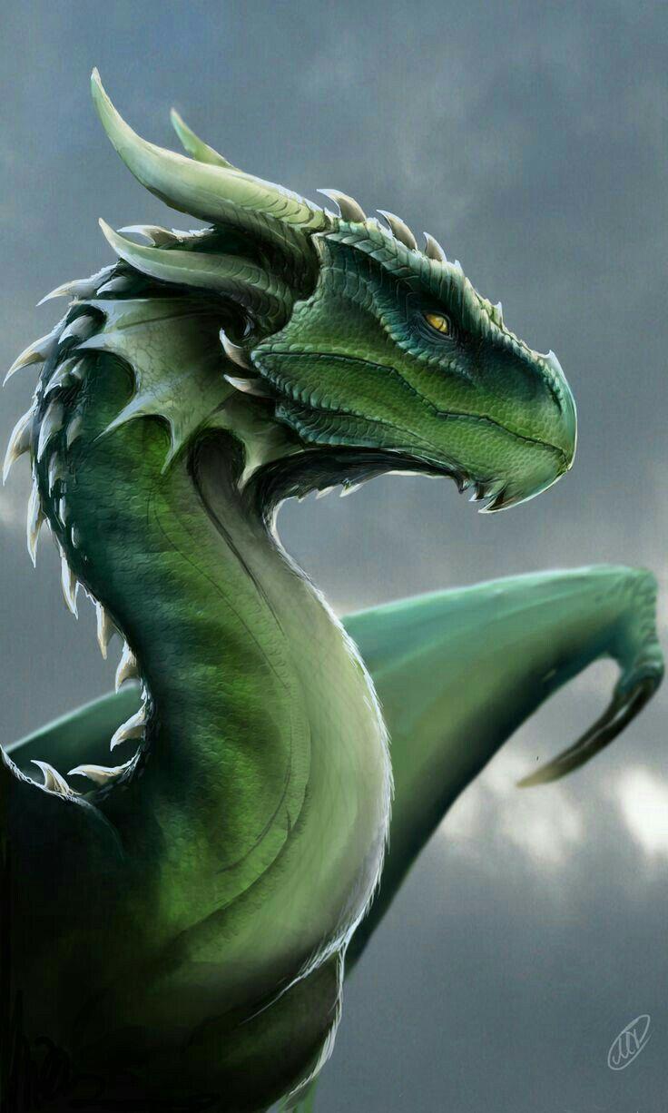 Dragon, green; Dragons | Dragons in 2019 | Dragon, Fantasy ...