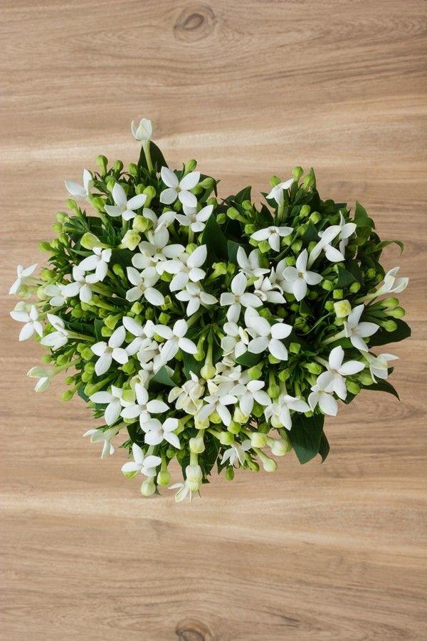 White Bouvardia Natural Bouquet White Flower Bouquet Order Wedding Flowers