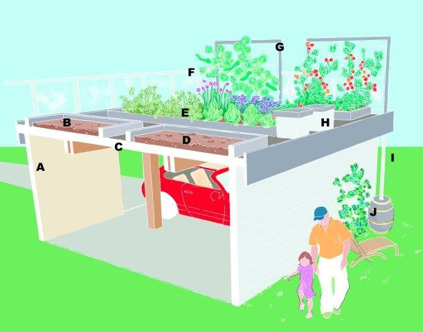 Build An Edible Rooftop Garden Rooftop Garden Roof Garden