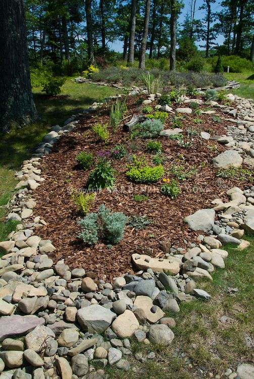 Lovely Garden Bed Mulched On Hillside Slope Bordered With Native Rocks And Stones  In Sunny Summer Spot