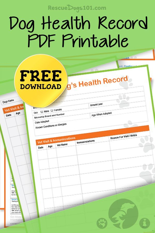 Keep track of your dogs health record with our free PDF printable. We have an entire resource library to make keeping your dog healthier easier.  #doghealth #printables #freedownload #doggies #doglovers #dog #dogadopt #dogadoption #adoptadog #dogstuff #cuteanimals #puppy #doggoals #puppylove  #rescuedogs101