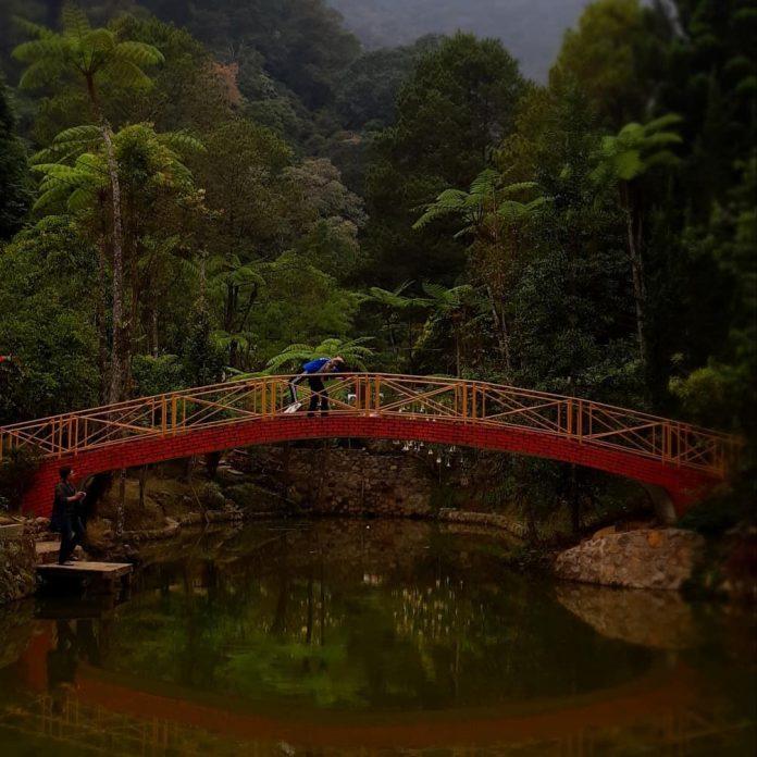 Melrimba Garden Puncak Cisarua Di 2020 Taman Jepang Tempat Pemandangan