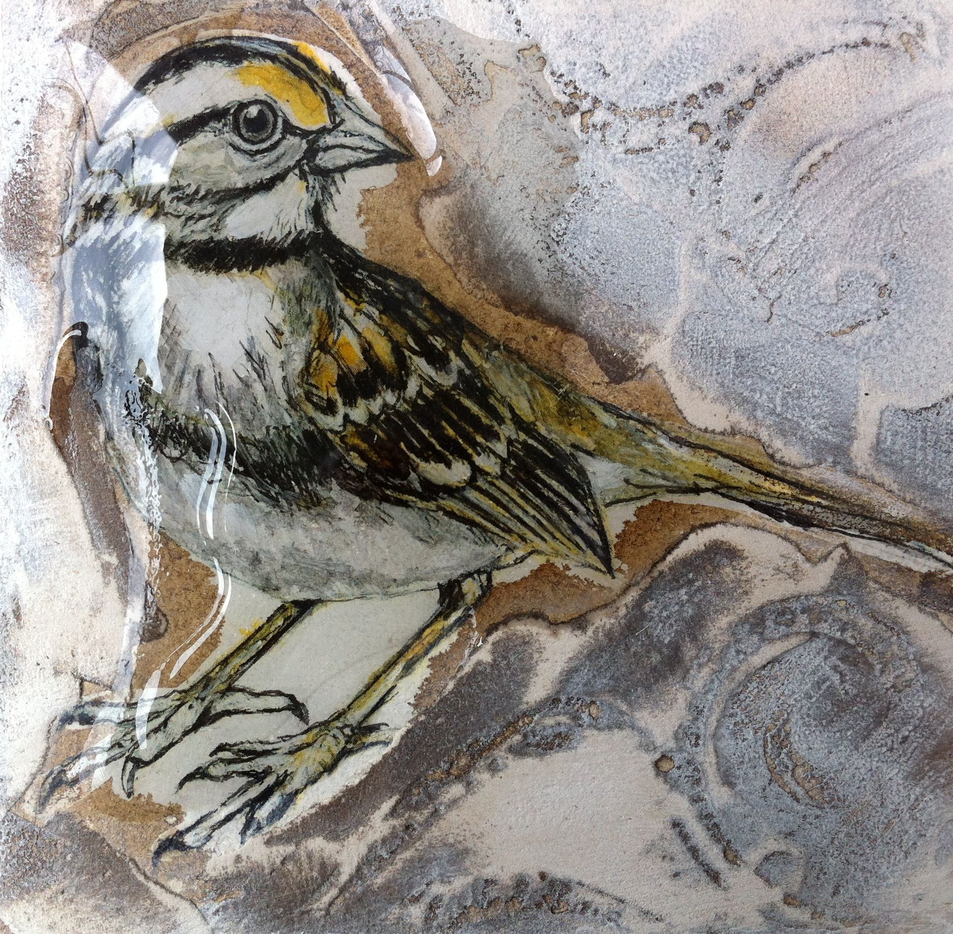 Sparrow mixed media by Joan Martin