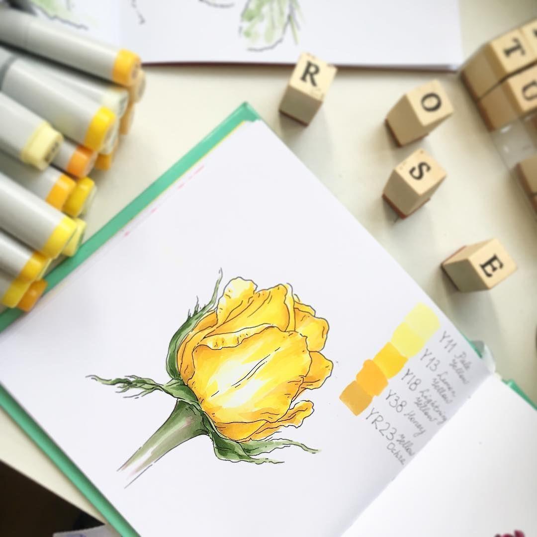 Drawing flowers mandala in ink copic marker art