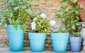 Coloured planters