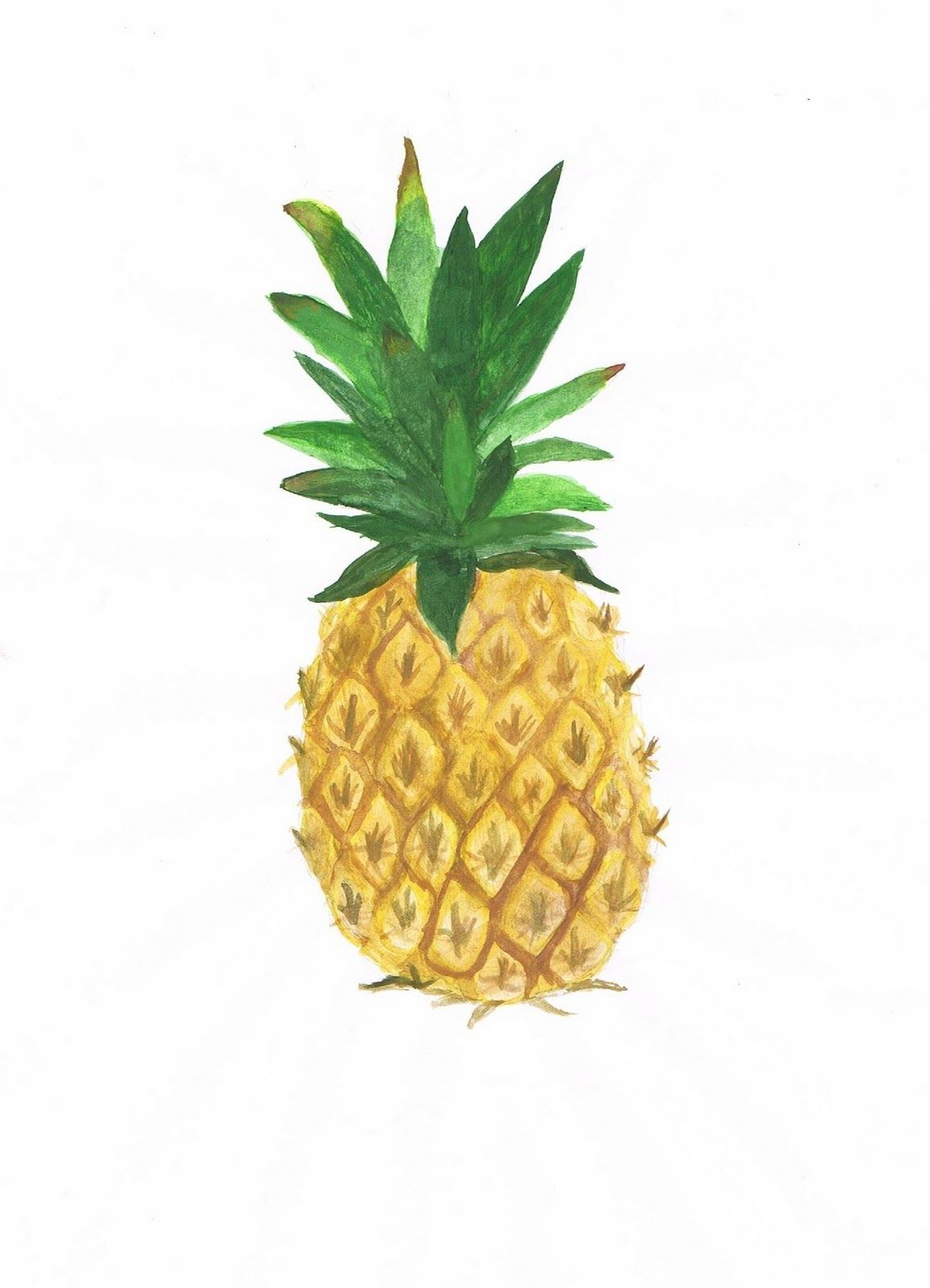 Pineapple Watercolor Pineapple Pineapple Pictures Pineapple Wallpaper
