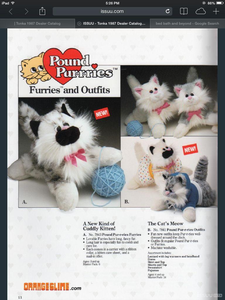 Pound Purries Dealer catalog photo Pound puppies, Cuddly