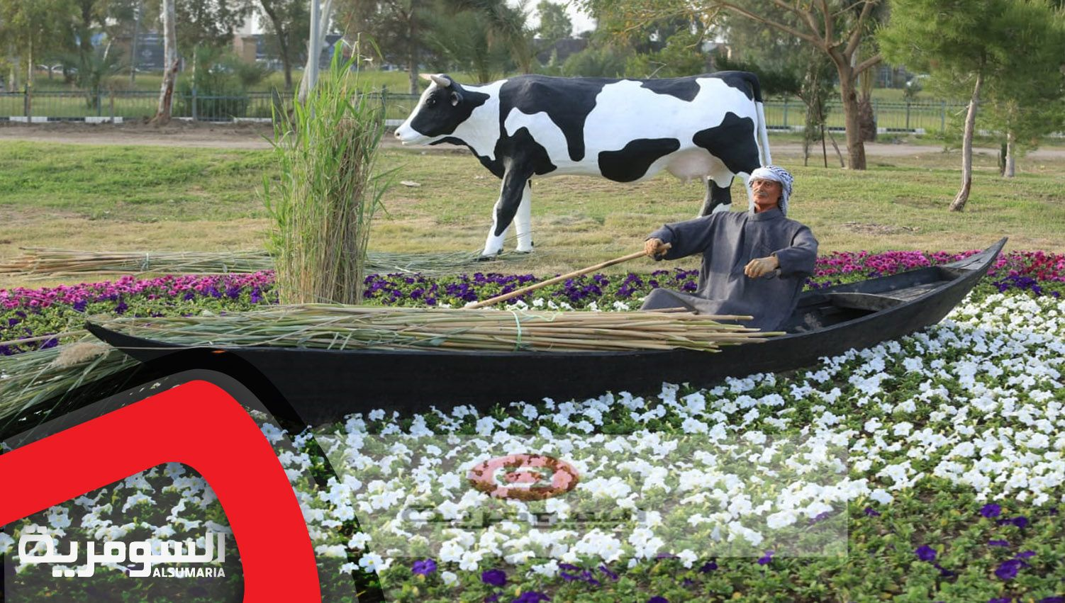 Pin By قناة السومرية Alsumaria Tv On بالصور الزهور تبتسم في أحضان بغداد Animals Cow