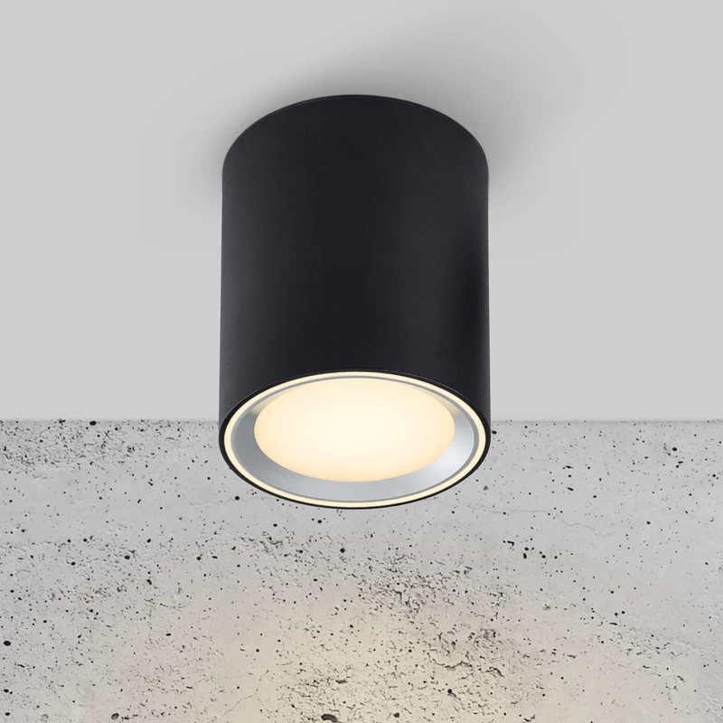 Fallon LED Surface Downlight in 2020 Downlights, Led