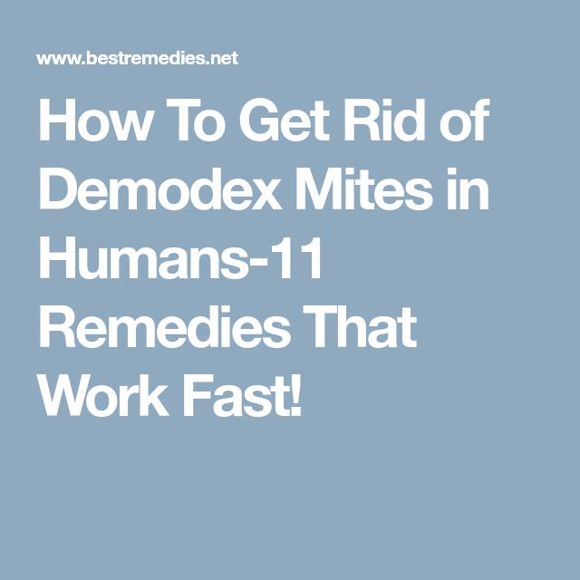 a8ff99ca1f484899acbe5a08ef531533 - How To Get Rid Of Mites On Skin Naturally