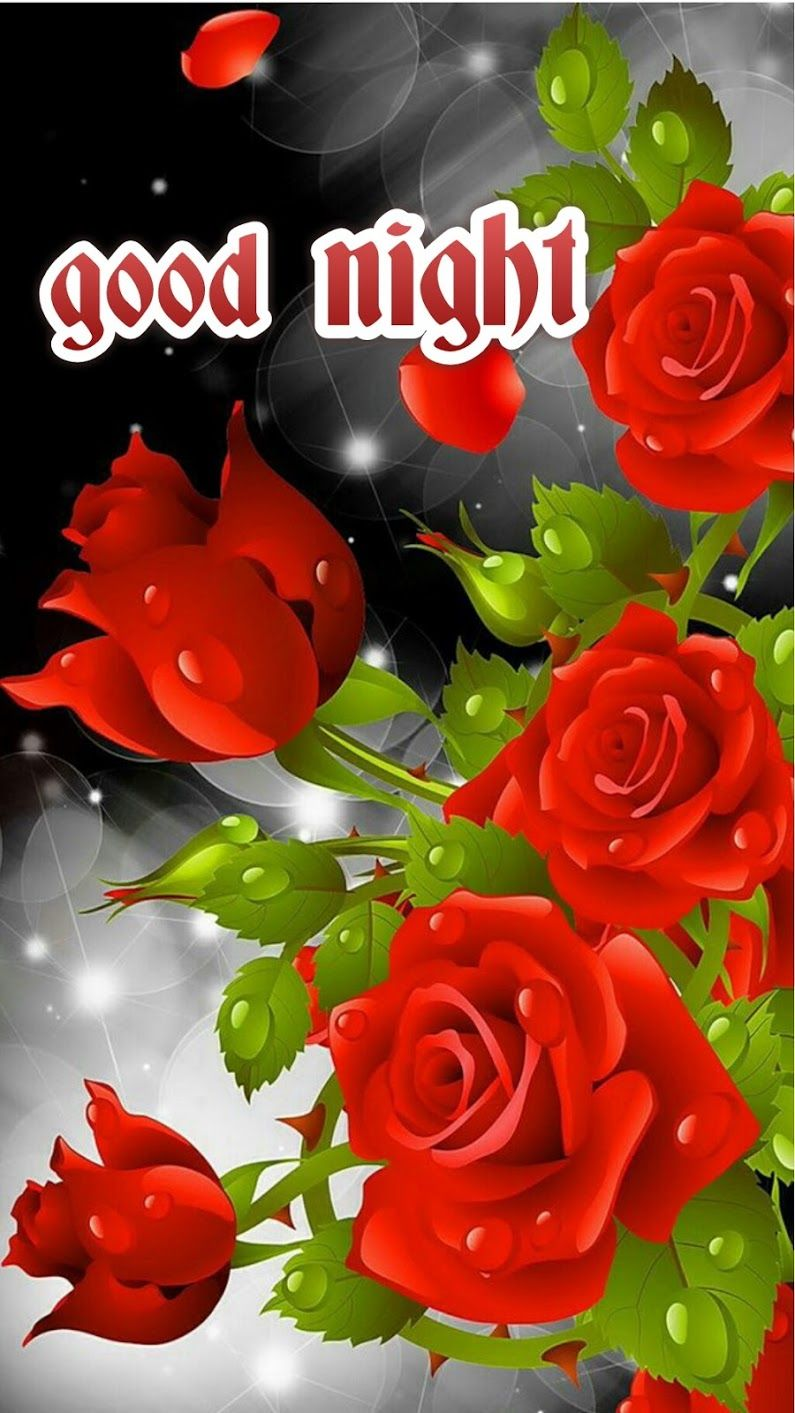 Sign In Good Morning Roses Good Morning Flowers Flower Pictures Good morning red rose hd wallpaper gif