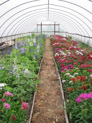 Pin On Hoop House