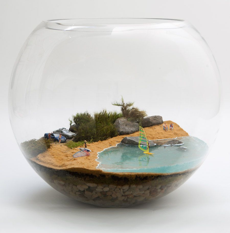 Petite green u large fish bowl mossarium life is a beach u see more