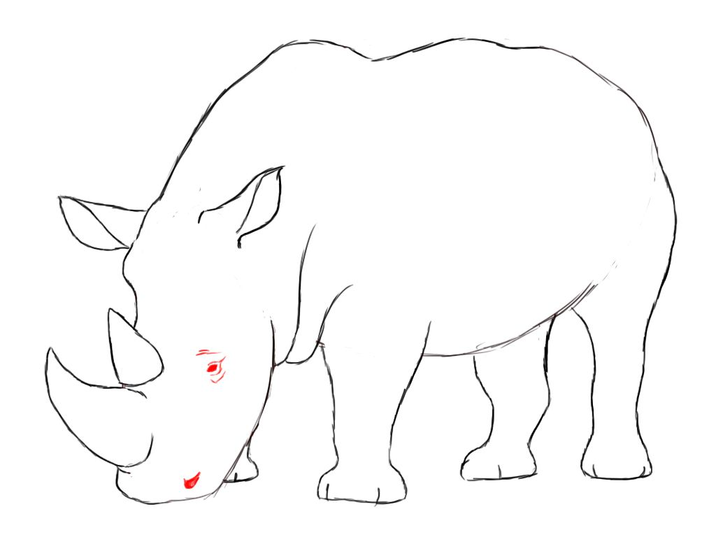 How to draw a rhino paper drawing pencil eraser and rhinos how to draw a rhino ccuart Gallery