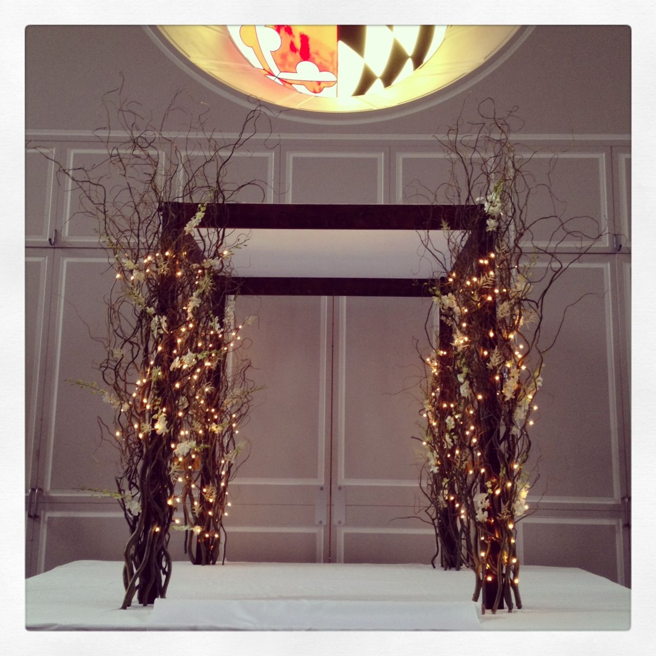 curly willow chuppah - Google Search