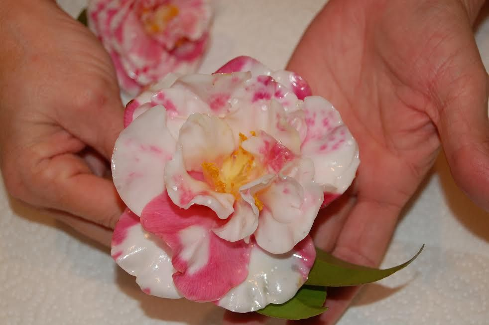 Flowers dipped in wax cute diy projects how to preserve
