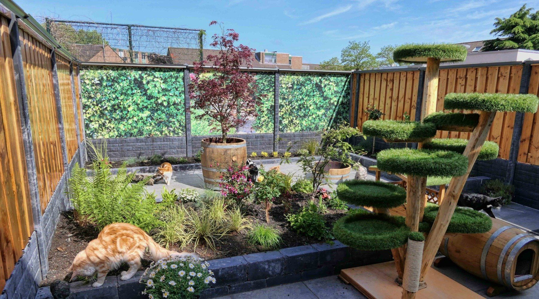 Cat Proof Yard Oscillot® CatProof Fence Backyard, Cat
