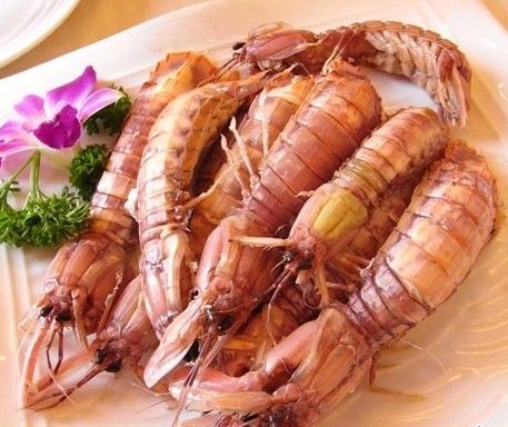 Image result for are mantis shrimp edible
