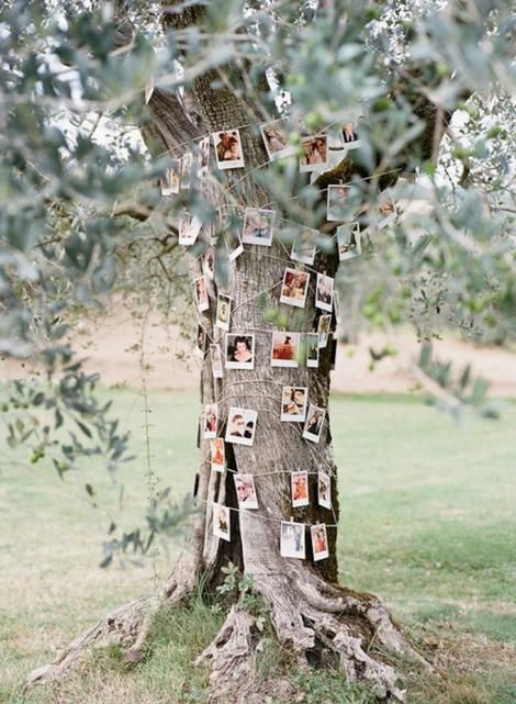 20 ideas para decorar tu boda al aire libre