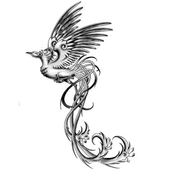 Wzór Tatuażu Feniks Tatuaż Tatuaż Tatuaże I Wzory