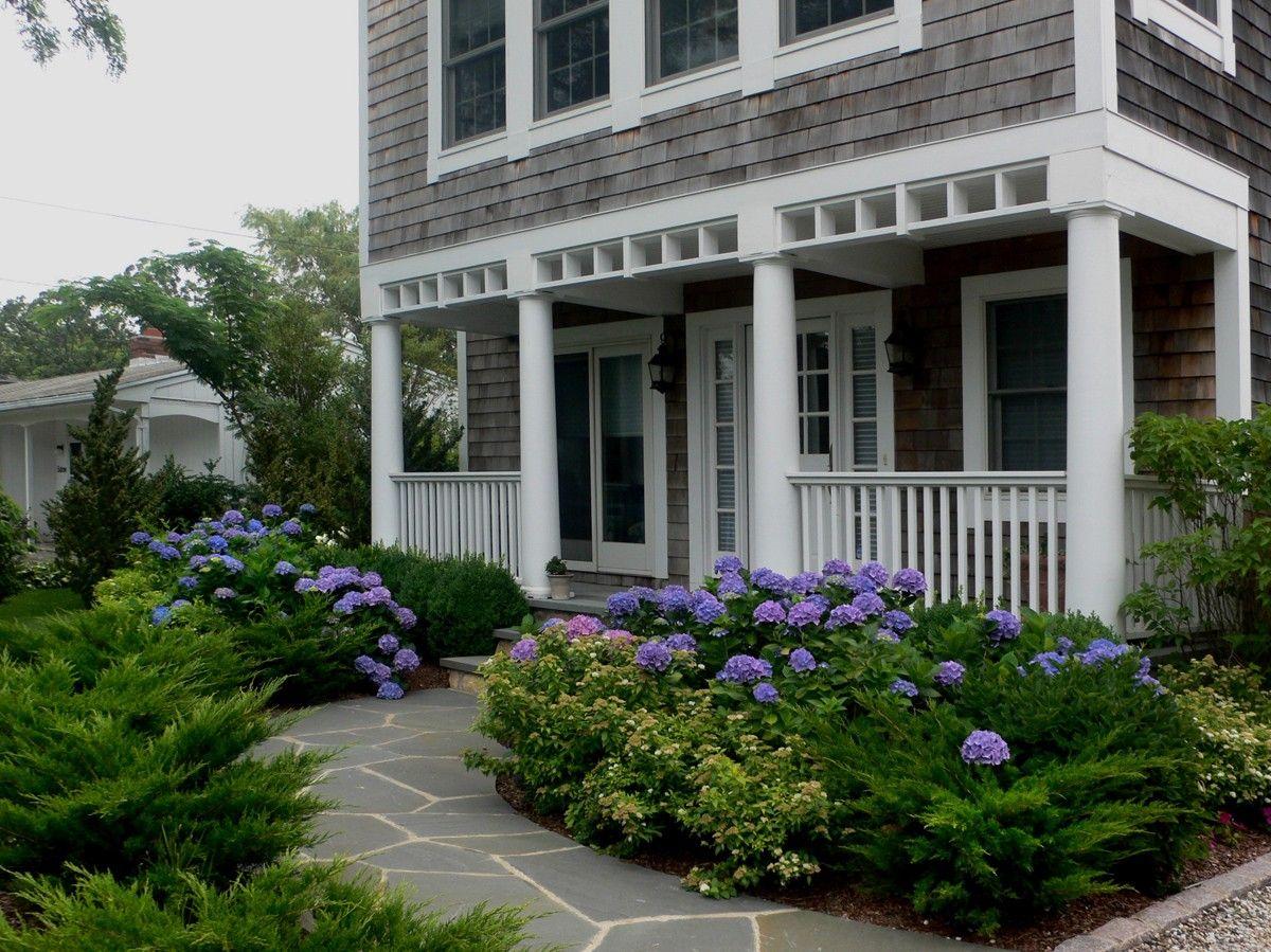 Blue Hydrangeas in front yard landscape | Y A R D | Pinterest ...