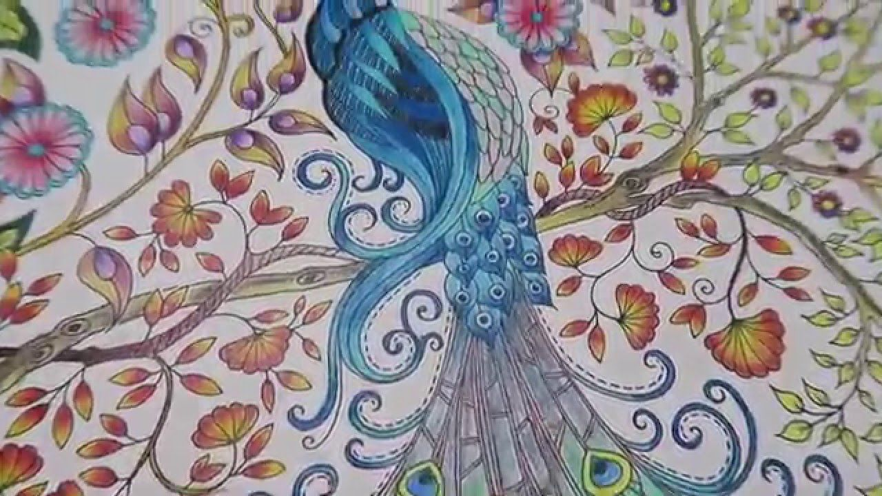 Hi Guys In This Video I Will Be Coloring The Peacock From Secret Garden Book By Using Prismacolor Premier Colored Woodcase Pencils