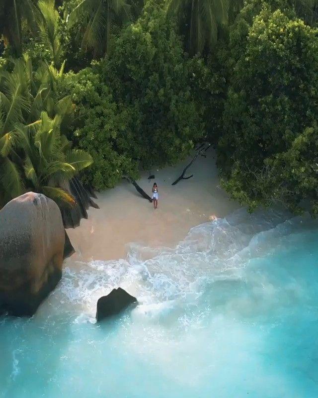 Sentir este ambiente tropical 🌴🌊 La dique island, seychelles de: @merrwatson  #ladigueisland #aloha19k #nature #life · · · · · · · · · · #islas #lifestyle #estilodevida #naturaleza #viajes #photography #destinos #travel #travelgram #travelvideos #travelearth #traveltheworld #mundo #amor #tropical #traveler #travelling #vacations #instagood #traveladdict #travelholic #travelphotography #beautifuldestinations #ambiente #vibes