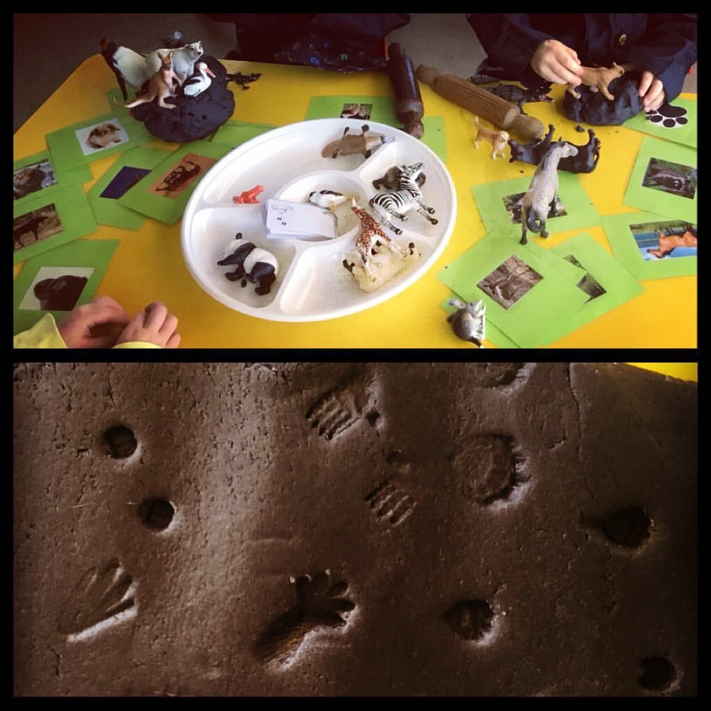 Animal Footprints In The Play Dough We Looked At Shape